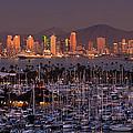 San Diego Skyline by Alexis Birkill