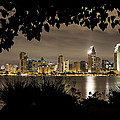 San Diego Skyline Framed 2 by Lee Kirchhevel