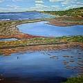 San Elijo Lagoon by Niko Sanchez