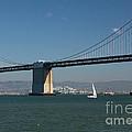 San Francisco Bay Bridge West Span Vii by Suzanne Gaff