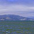San Francisco Bay Golden Gate Bridge    Alcatraz Panorama by LeeAnn McLaneGoetz McLaneGoetzStudioLLCcom