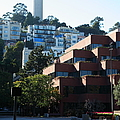 San Francisco Coit Tower At Levis Plaza 5d26188 by Wingsdomain Art and Photography