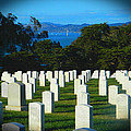 San Francisco National Cemetery In El Presidio by Emmy Vickers