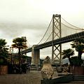 San Francisco Oakland Bay Bridge by Michelle Calkins