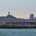 San Francisco Skyline -2 by Tommy Anderson