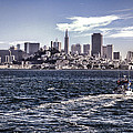 San Francisco Skyline by Diana Powell