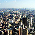 New York City Skyline by Doc Braham