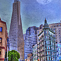San Francisco Transamerica Pyramid And Columbus Tower View From North Beach by Juli Scalzi
