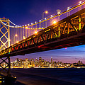 San Francisco - Under The Bay Bridge by Alexis Birkill