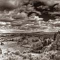 San Gimignano View by Michael Kirk