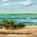 San Onofre Beach by Mary Scott