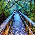 San Simeon Foot Bridge by Kaylee Mason