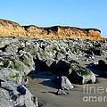 San Simeon Rocky Beach by Denise Mazzocco