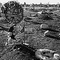San Xavier Del Bac Cemetery 1987 by David Lee Guss