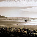 Sand And Silhouettes by Micki Findlay