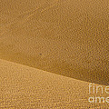 Sand Curves by Bob Phillips