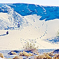 Sand Dune Bordering Salt Creek Trail In Death Valley National Park-california by Ruth Hager
