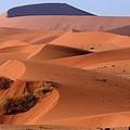 Sand Dune Sculpture  by Aidan Moran