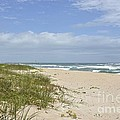 Sand Dunes And The Sea by Carol  Bradley