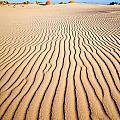 Sand Dunes At Eucla by Colin and Linda McKie