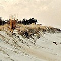 Sand Dunes At Penny Beach by Kim Bemis