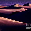 Sand Dunes At Sunrise by Paul W Faust -  Impressions of Light