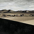 Sand Dunes In A Desert, Namib Desert by Panoramic Images