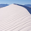 Sand Dunes In A Desert, White Sands by Panoramic Images