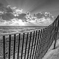 Sand Dunes In Black And White by Debra and Dave Vanderlaan