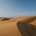 Sand Dunes In The Namib Desert In Namibia by Dray Van Beeck