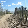 Sand Fence At Southern Shores  by Cathy Lindsey