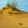 Sand Hill by Bob Phillips