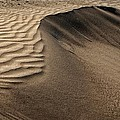 Sand Pattern Abstract - 2 by Nikolyn McDonald