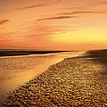 Sand Ripples by Phill Doherty