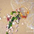 Sand Sea And Shells by Ed Weidman