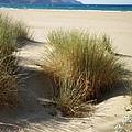 Sand Sea Mountains - Crete by Lainie Wrightson