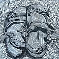 Sandals - Doodle  by James Lavott