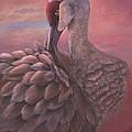 Sandhill Crane  by Fineartist Ellen