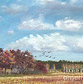 Sandhill Cranes At Crex With Birch  by Jymme Golden