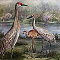 Sandhill Cranes On Alert by Roxanne Tobaison