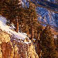 Sandia Peak Summit Albuquerque New Mexico by Mary Lee Dereske
