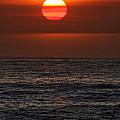 Sandi's Sunset By Diana Sainz by Diana Raquel Sainz