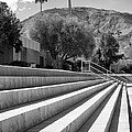 Sandpiper Stairs Bw Palm Desert by William Dey