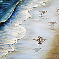 Sandpipers On The Beach by Zina Stromberg