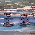 Sandpipers Running In Beach Shade 3-10-15 by Julianne Felton
