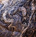 Sandstone Boulder Detail by Barbara Snyder