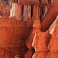 Bryce Canyon Gateway   by Aidan Moran