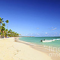Sandy Beach On Caribbean Resort  by Elena Elisseeva
