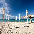 Sandy Beach Umbrellas by Roy Pedersen