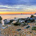 Sandy by JC Findley